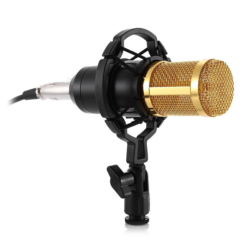 ZEEPIN BM-800 Audio Sound Recording Condenser Microphone with Shock Mount