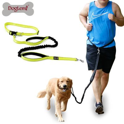 DogLemi WL105 Dog Leash Free Hands Nylon Reflective Running Pet Lanyard