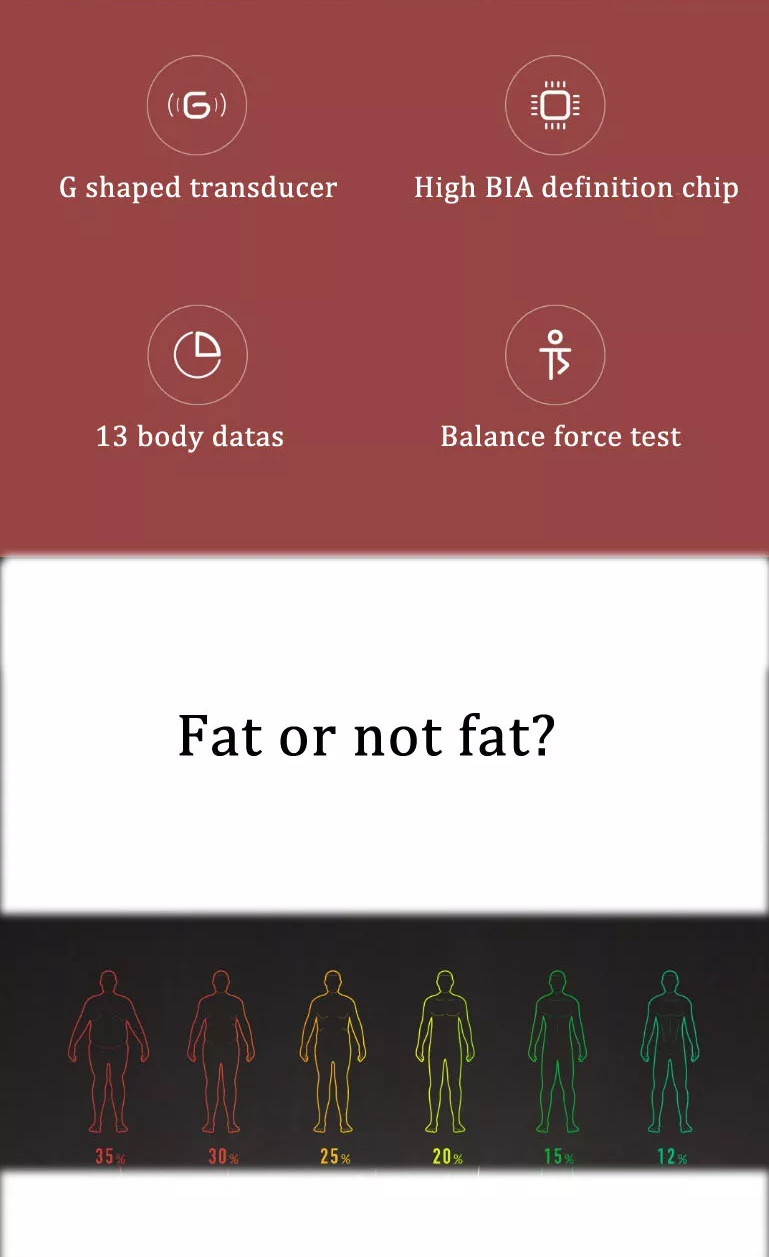 buy xiaomi 2.0 body fat scale
