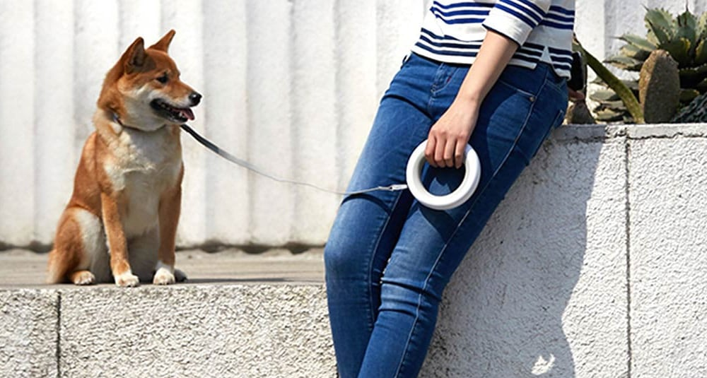 xiaomi youpin ms0030001 pet traction rope review