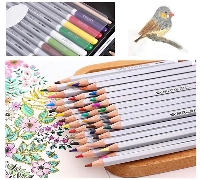 deli 36pcs water soluble color pencil 2019