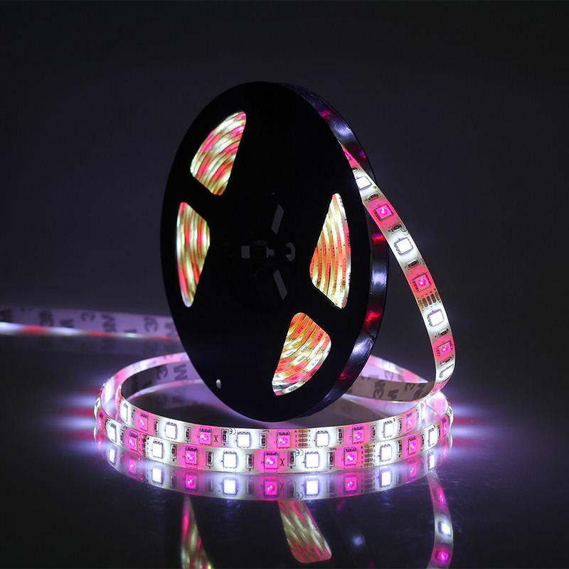 buy jiawen 5m 5050 rgbw led strip lights set