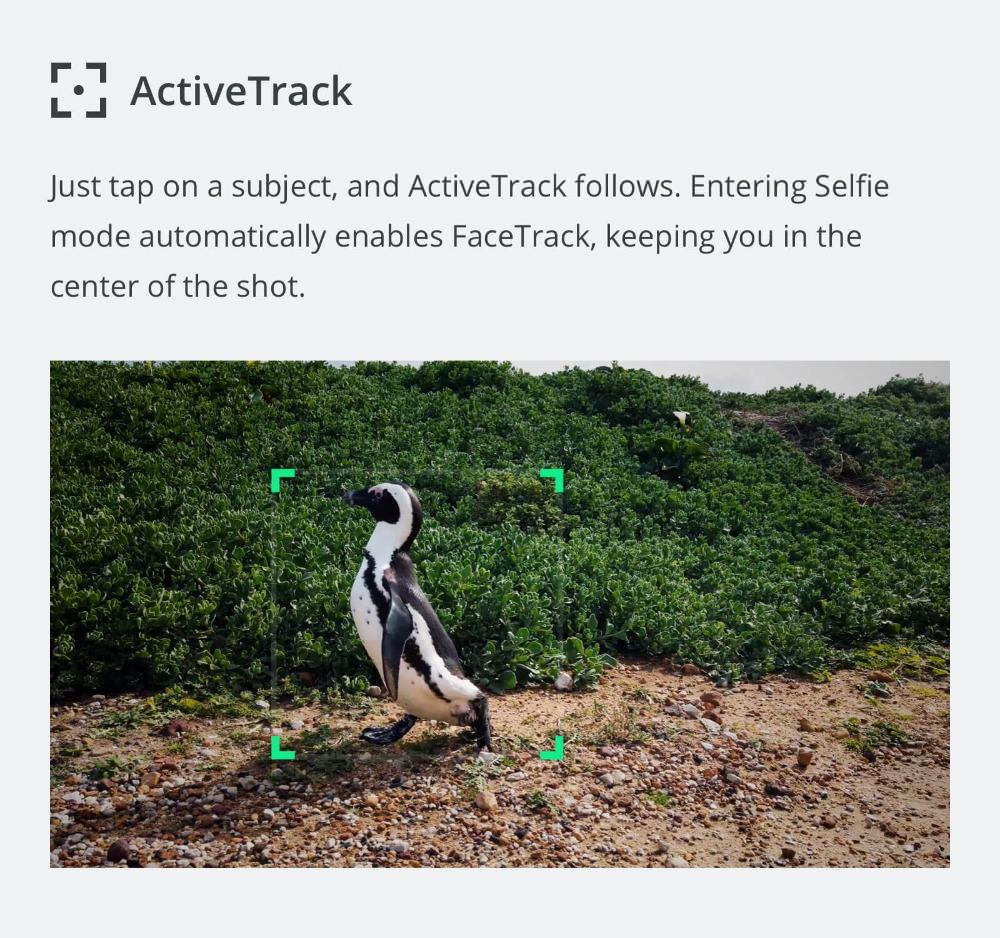 dji osmo pocket stabilized camera online