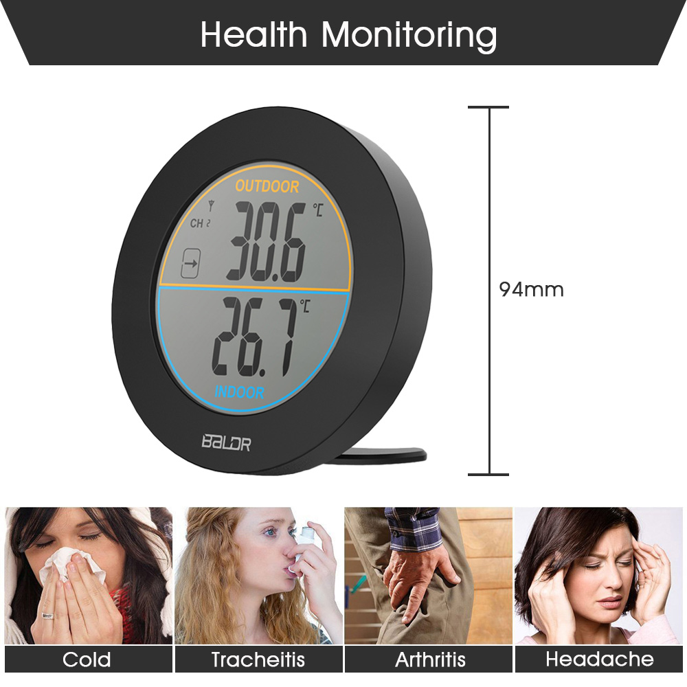 baldr digital thermometer price