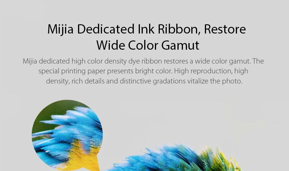 xiaomi mijia photo paper ink ribbon set