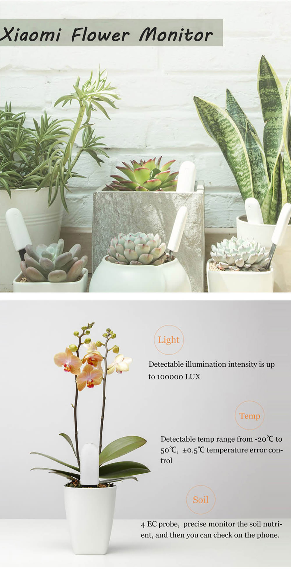 xiaomi flora 4 in 1 flower plant soil monitor