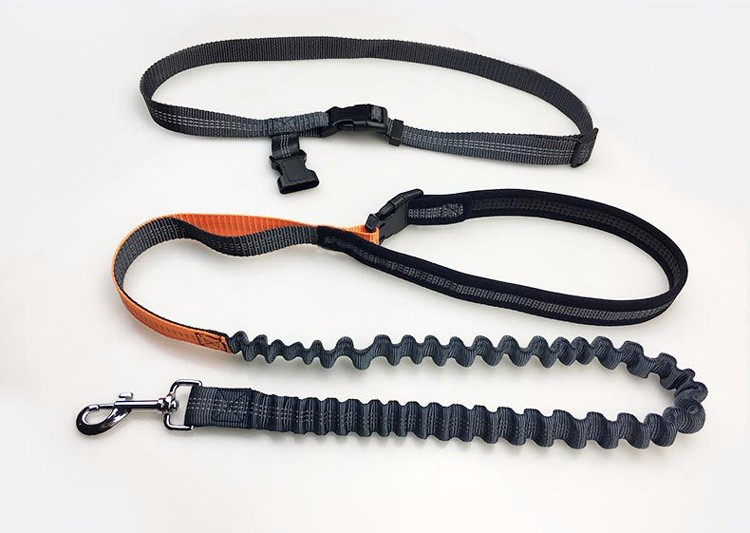 PUGGA Adjustable Nylon Dog Collar Leash with Waterproof Waist Bag