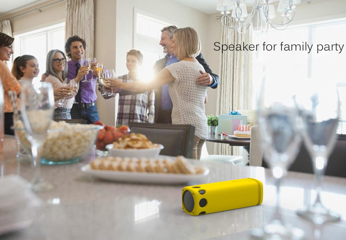 i2 bluetooth speaker